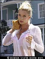 Nicolette Sheridan, Desperate Housewives